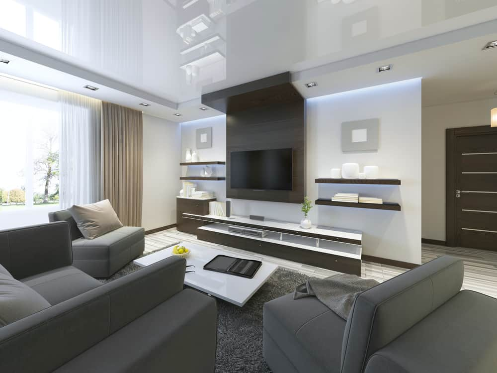 Contemporary style living room with TV